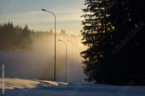Winter landscape with road and spruce trees silhouettes at sunset