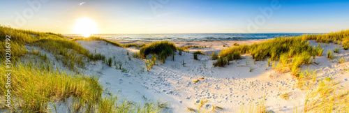 Foto op Aluminium Strand Coast dunes beach sea, panorama
