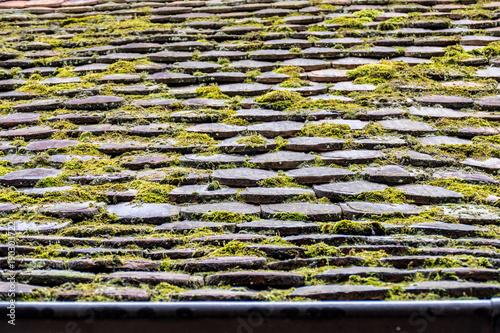 Foto op Plexiglas Baksteen muur Moos auf Dach