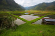 Rice fields with mirror reflection at,located at  Harau Valley,mountains and rice fields at Sumatra island, Indonesia