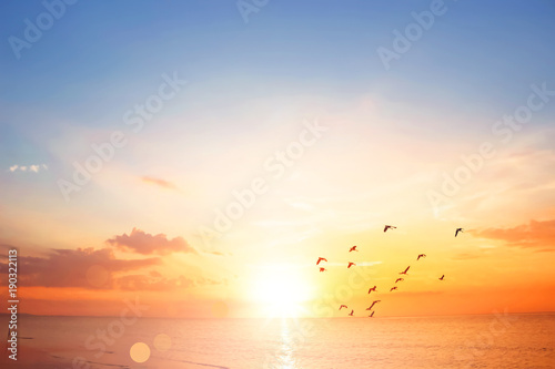 Papiers peints Morning Glory Flying bird at sunset sky background