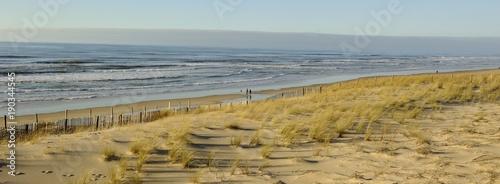 Lacanau, dune et océan - 190344545