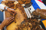 Process of making traditional cigars from tobacco leaves with own hands using a mechanical device and press.