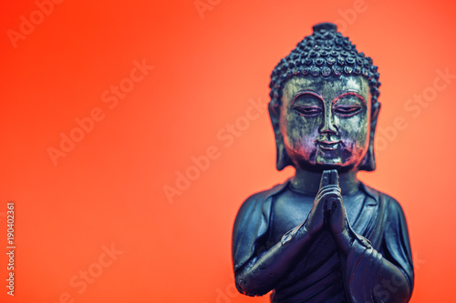 Foto op Canvas Boeddha buddha statue , modern fashion interior background