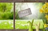 Window, Green Meadow, Happy Easter - 190444958