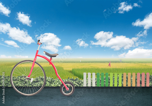 Fotobehang Fiets Red vintage bicycle with on road in front of rice field and blue sky. background for display product or business text concept in summer