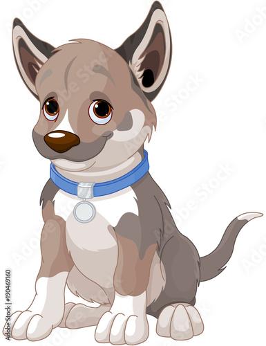 Plexiglas Meisjeskamer Puppy Dog