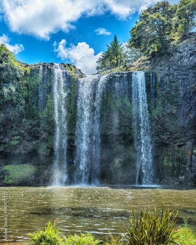 Whangarei Falls - Waterfalls of New Zealand - 190471327