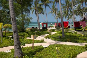 Garden at Koh Phangan, Thailand