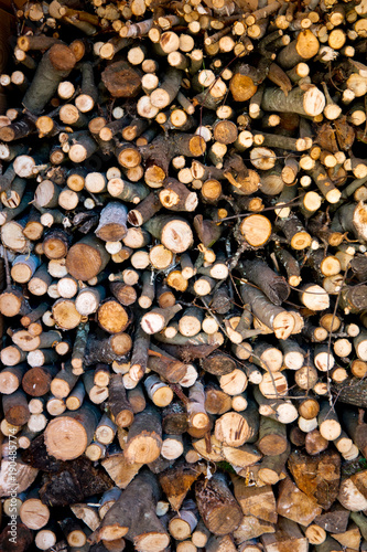 Deurstickers Brandhout textuur Pile of dry stacked firewood for winter