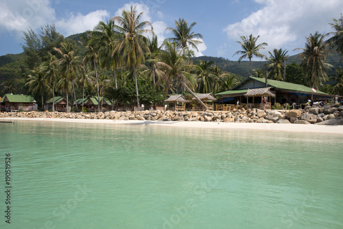 Keuken foto achterwand Olijf Chaloklum beach, Koh Phangan, Thailand