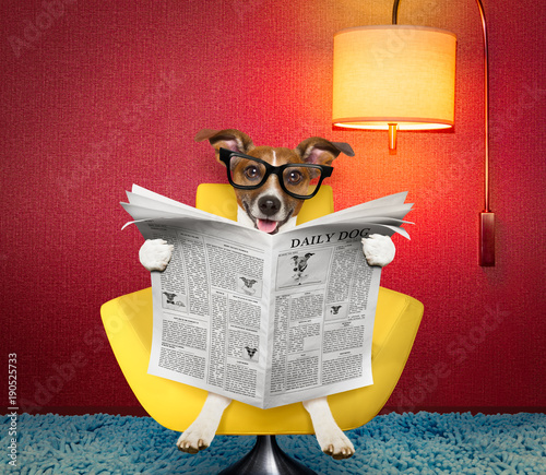Tuinposter Crazy dog dog reading newspaper at home