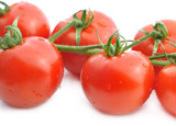 freshness group of tomatoes cevered with drops on white background