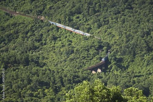 Fotobehang Khaki yeşil ormanda tren yolu