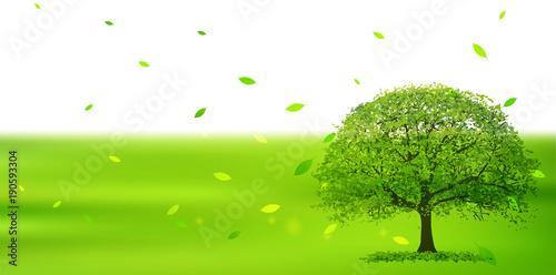 Aluminium Lime groen 新緑 葉 エコ 背景