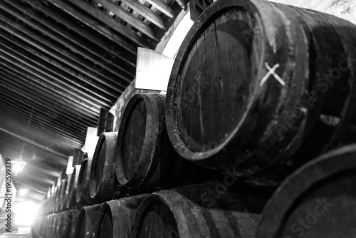 Barrels for wine stacked in the cellar