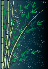 bamboo drawing background