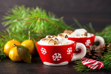 Beautiful Christmas background with Cup of marshmallows, the Christmas tree branches. Selective focus