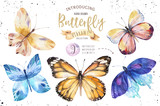 Set of watercolor boho butterfly. Vintage summer isolated spring art. Watercolour illustration. design wedding card, insect, flower beauty banner. Bohemian decoration. - 190637991