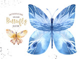 Set of watercolor boho butterfly. Vintage summer isolated spring art. Watercolour illustration. design wedding card, insect, flower beauty banner. Bohemian decoration. - 190639390