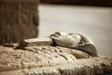 Pharaoh stone sarcophagus tomb - 190651966