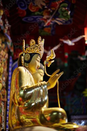 Fotobehang Thailand Golden buddha statues, Seongnimsa temple, Korea