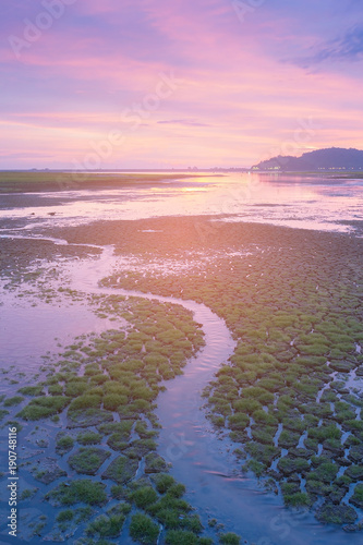 Fotobehang Lichtroze Dramatic sunset sky over small water creek, natural landscape background