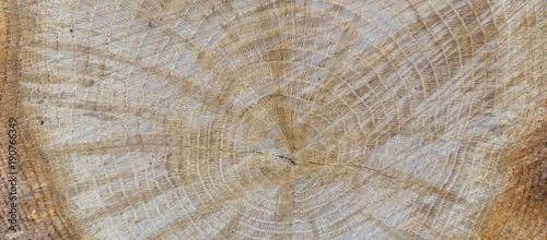 Holz beschaffenheit als Hintergrund - 190766349