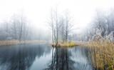 ruhiges und kaltes Winterwetter an einem Gewässer im Land Brandenburg ( Deutschland ) - 190772517