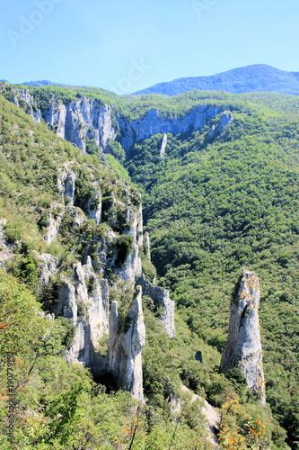 Foto op Canvas Pistache view in Vela draga nature, Istria, Croatia