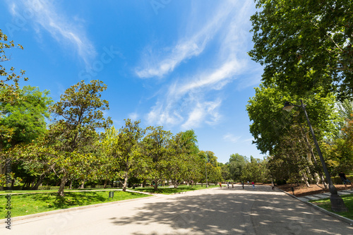 Foto op Canvas Madrid The Buen Retiro Park - Madrid - Spain