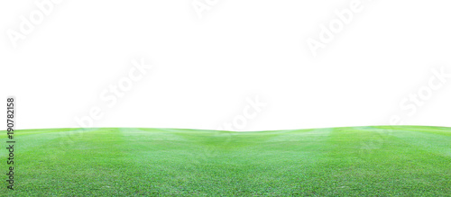 Foto Murales Green grass field on a white background.