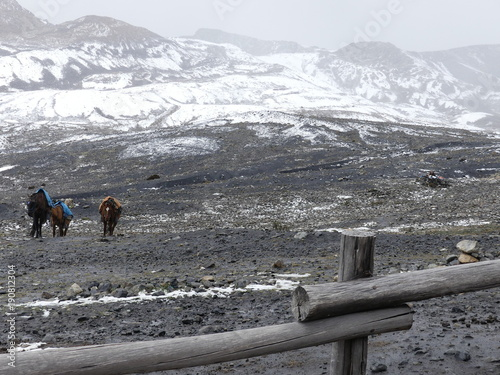 Fotobehang Grijs Glacier de Pastoruri à Huaraz dans la Cordillère des Andes au Pérou