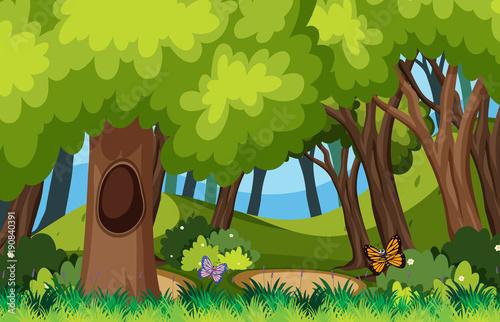 Papiers peints Pistache Background scene with butterflies in forest