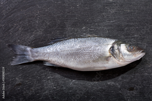 fresh fish sea bass on dark background