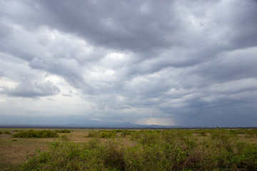 Dramatic cloudy sky over savanna in Kenya national park