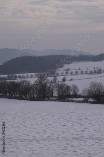 Foto op Canvas Donkergrijs winter landscape