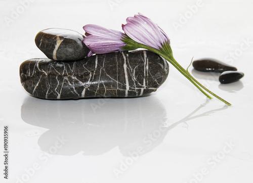 Staande foto Spa piedras y flores