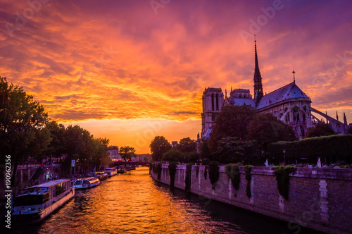 Wall mural Stunning pink sunset over Paris