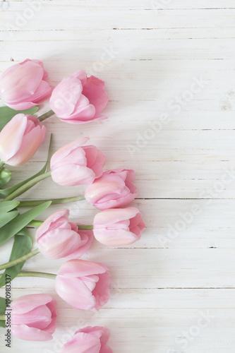 Fototapeta beautiful pink tulips on white wooden background
