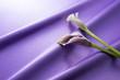 紫色のサテンと紫色のカラー