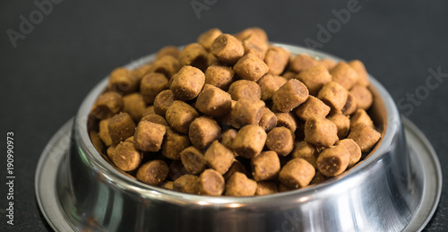 Dry dog treats in bowl