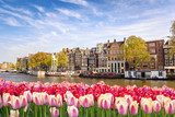Amsterdam city skyline at canal waterfront with spring tulip flower, Amsterdam, Netherlands © Noppasinw