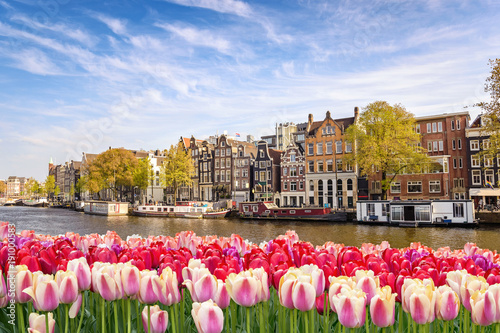 Fotobehang Tulpen Amsterdam city skyline at canal waterfront with spring tulip flower, Amsterdam, Netherlands