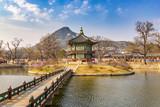 Spring at Gyeongbokgung Palace, Seoul, South Korea - 191001710