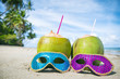 Quadro Colorful sequined carnival masks and fresh green coconut drinks on a palm fringed beach in Brazil