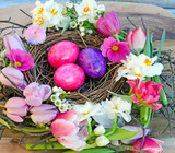 Happy Easter: nest with Easter eggs, feathers, tulips and daffodils:) - 191038558