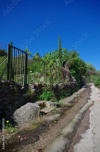 In de dag Cappuccino Jardins ouvriers avec fleurs et beaux paysages