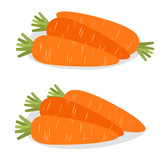 Carrot Icon. Bunch of roots. Vector illustration. - 191051117