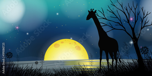 Fotobehang Groen blauw Background scene with silhouette giraffe at night